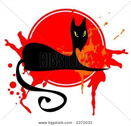 Black Cat In A Red Frame