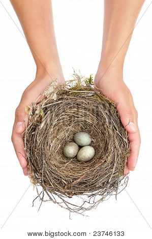 Young woman holding blackbird nest