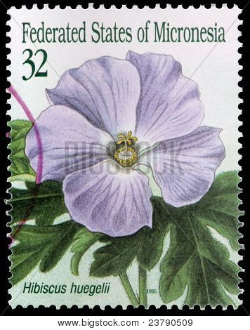 A 32-cent Stamp Printed In The Federated States Of Micronesia
