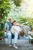 Affectionate senior couple sitting on bench over large green plants while enjoying their travel at r poster