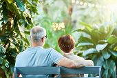 Rear view of affectionate senior couple sitting on bench in the garden or park at leisure poster