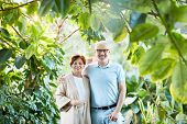 Mature affectionate couple taking walk in green garden among various trees and plants poster