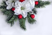 Holiday Xmas Flower