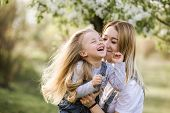 Young Mother With Adorable Daughter In Park With Blossom Tree. Happy Mother And Child poster