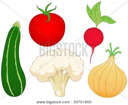 Vegetable set: zucchini, tomato, radish, onion and cauliflower