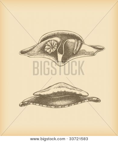 Hats drawing - tricorne hat & floppy hat