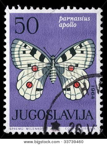 "YUGOSLAVIA - CIRCA 1964: A stamp printed in Yugoslavia shows butterfly with the inscription ""Parnassius apollo"" from the series ""Butterflies"", circa 1964"