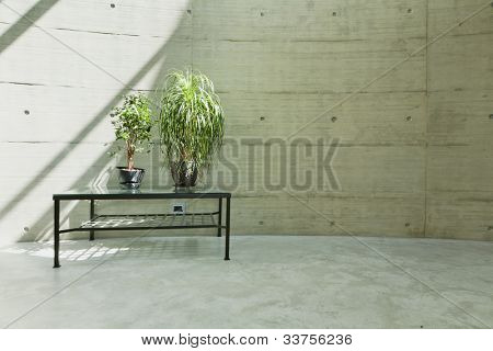 Pared de Beton