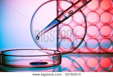 Pipette and  Petri dish biochemical laboratory