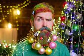 Serious Bearded Man With Decorated Beard. Christmas Decorations. Santa Claus Man With Decorated Bear poster