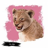 Lion Animal Watercolor Baby Tabby Portrait In Closeup. Deep-chested Cat With Mane Looking Aside. Mam poster