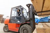 Young male worker driving forklift in lumber yard  poster