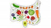 Healthy Intestines, Healthy Food For Digestion. Fiber, Bran, Fruits, Vegetables Greens Healthy Food poster