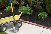picture of wheelbarrow  - Its about that time to mulch around the neigboorhood - JPG