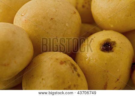 Marula Fruit (scleracarya Birrea)