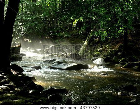 Gurgling Smoky Mountain stream with mist at sunrise