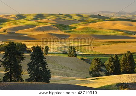 Farmland at Harvest Time