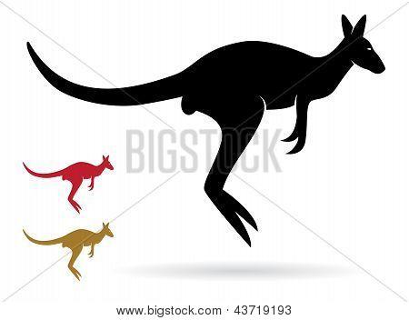 Vektor-Bild von einem Känguru