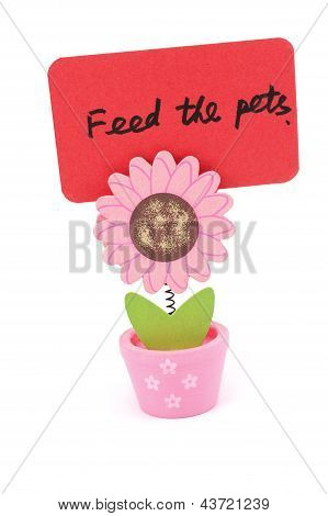 Feed The Pets