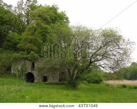 Ruined Building Landscape