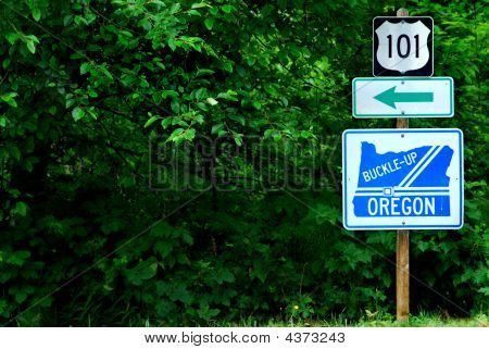 Route 101 In Oregon