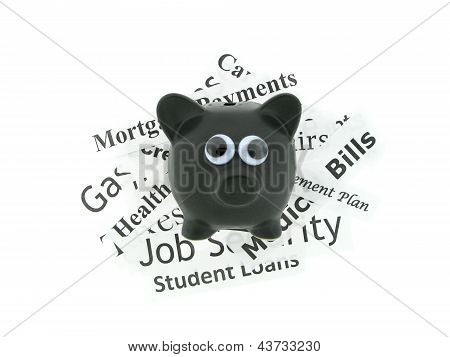 Googly Eyes Pig with Expenses