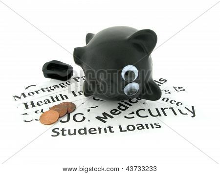 Piggy Bank with Expenses