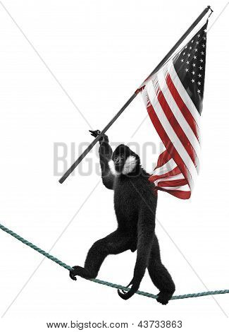 Monkey Holding Flag
