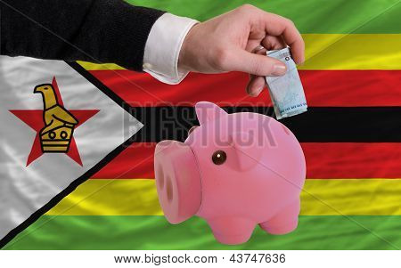 Funding Euro Into Piggy Rich Bank National Flag Of Zimbabwe