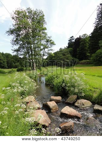 Rural Stream Landscape
