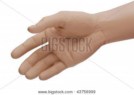 Vamos a estrechar la mano!