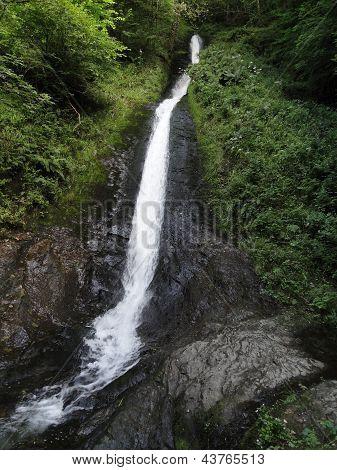Rural Waterfall