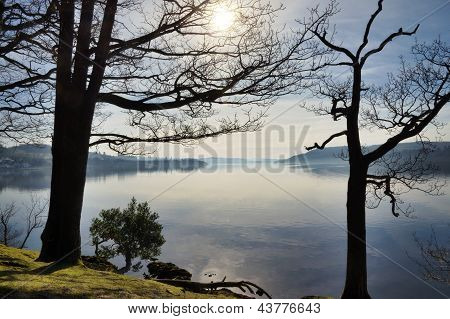 Lake Windermere framed by two trees