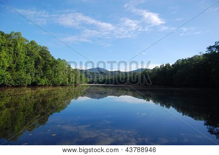 River Hills Reflection