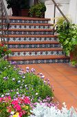 image of entryway  - Exterior of home with patterned tiled stairs in garden entryway - JPG