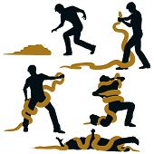 foto of anaconda  - Editable vector illustration sequence of a man wrestling with a large snake and losing - JPG