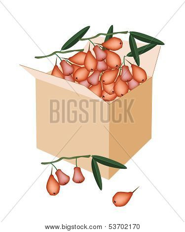 Red Water Apple In A Shipping Box
