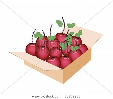 Sweet Fresh Apple In A Shipping Box