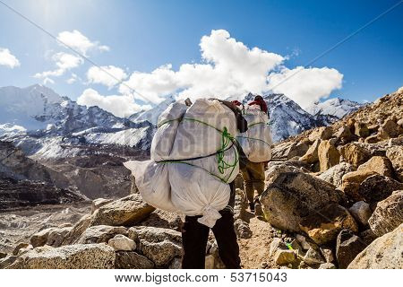 People Walking Trail In Himalaya Mountains