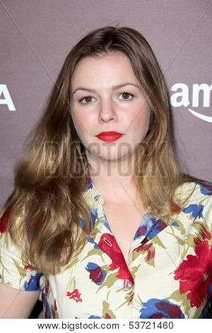 LOS ANGELES - NOV 6:  Amber Tamblyn at the Hollywood Reporter's Next Gen 20th Anniversary Gala at Hammer Museum on November 6, 2013 in Westwood, CA