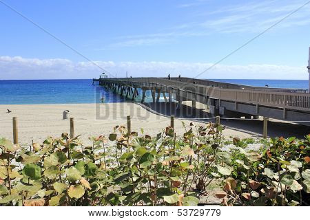 Pier In Deerfield Beach