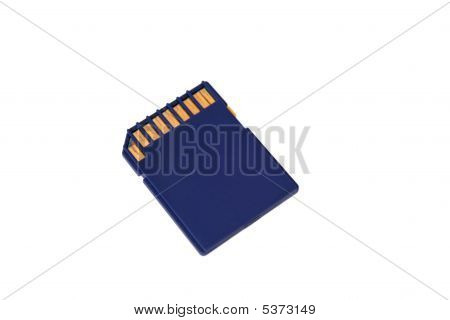 Sd Card Isolated On White Background. Back View