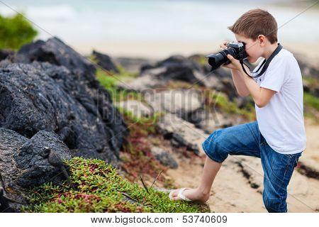 Little boy photographing marine iguanas on volcanic rocks