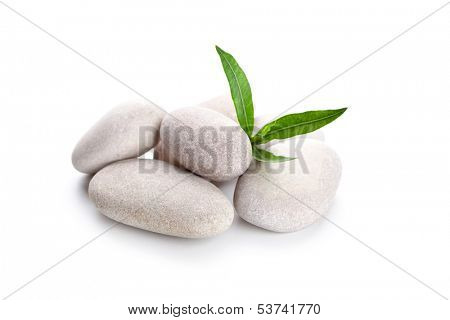 heap of stones and green leaves isolated on whine background