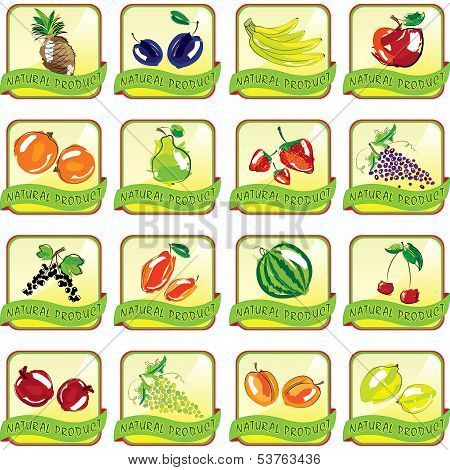 Set Of Art Fruit Icons