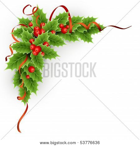 Vector Christmas holly with berries