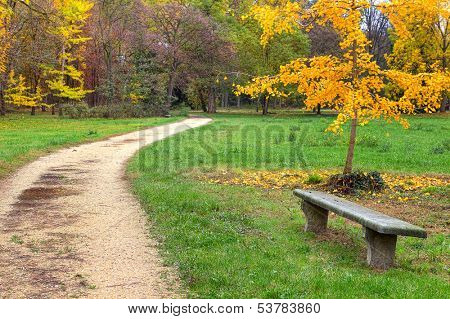 Stone bench and unpaved footpath in autumnal park of Racconigi in Northern Italy.