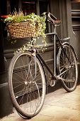 Old bike with flowers in the shopping basket, leaning against the outside of a building. Retro style