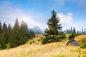 Camping tent in a mountain environment. Carpathian, Ukraine, Europe. Beauty world.