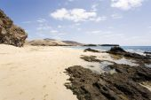 picture of papagayo  - wide - JPG